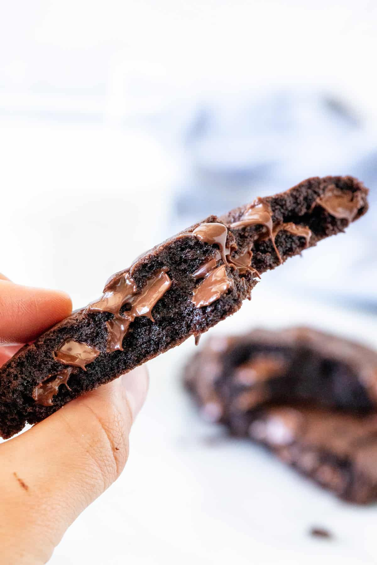 Hand holding a piece of a double chocolate cookie