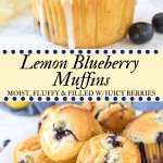 These lemon blueberry muffins have a soft and fluffy texture, delicious lemon flavor, and tons of juicy berries. With golden muffin tops and a sweet lemon glaze - they make for the most delicious muffin recipe!#blueberry #lemon #muffins #lemonblueberrymuffins #breakfast #recipes