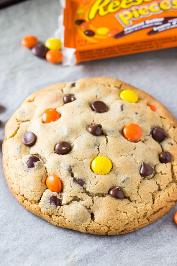 Peanut Butter Cookie for One - A giant, super soft peanut butter cookie filled with chocolate chips and Reese's Pieces. Ready in under 20 minutes. www.justsotasty.com