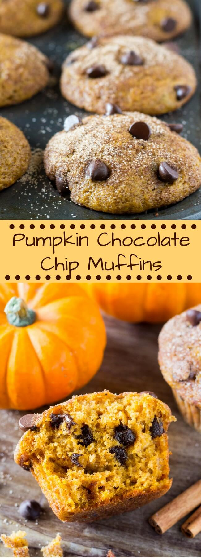 Filled with cinnamon, nutmeg, vanilla, a healthy dose of pumpkin and chocolate chips - these super moist Pumpkin Chocolate Chip Muffins are a must for your fall baking! #pumpkin #fall #fallbaking #muffins #pumpkinchocolatechip