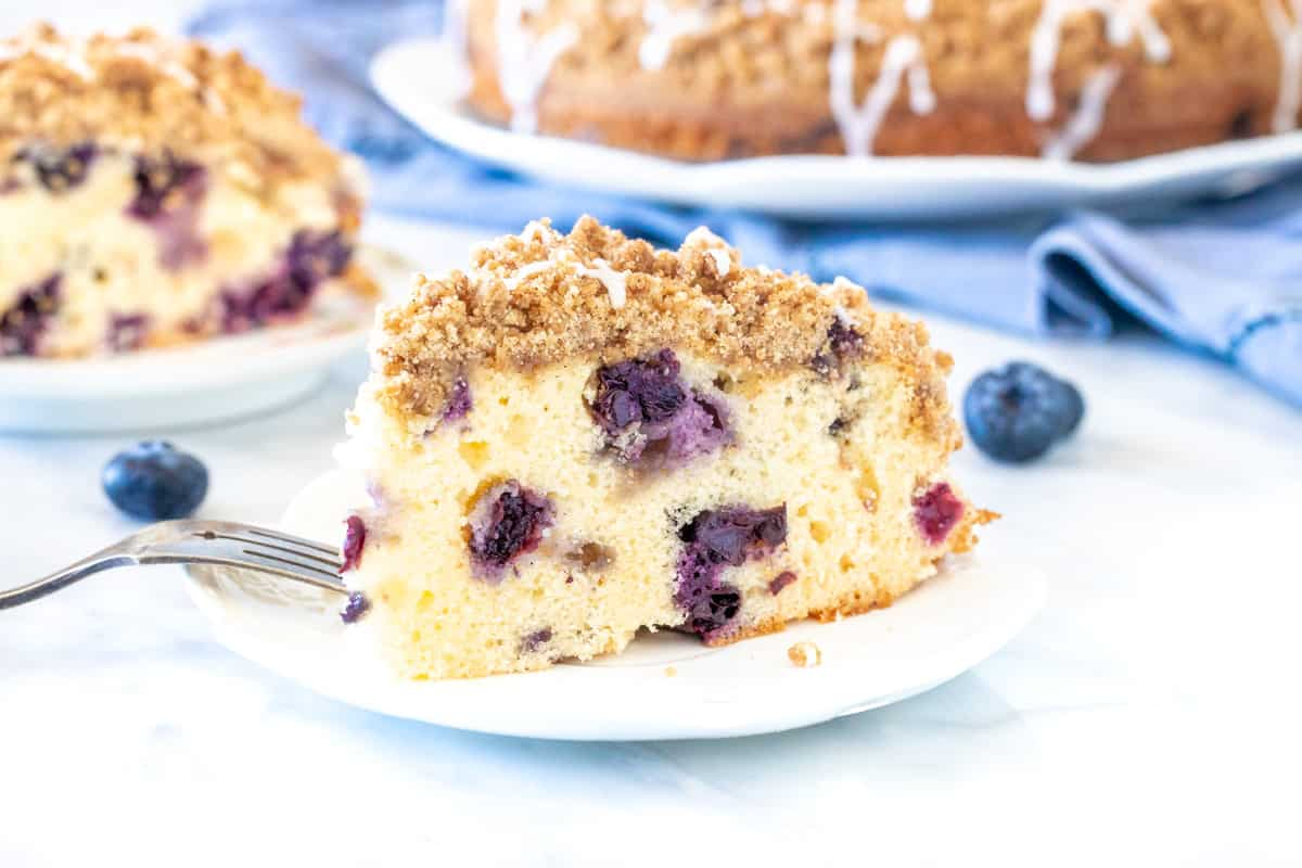 Slice of blueberry cake with cinnamon crumb topping