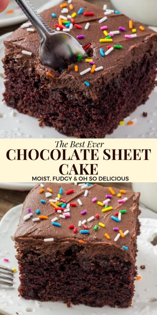 This chocolate sheet cake is an easy recipe made with everyday ingredients that you already have in your pantry. It's moist and fudgy with a delicious chocolate flavor and topped with chocolate frosting #chocolate #cake #sheetcake #frosting #recipes #chocolatecake