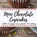 These mini chocolate cupcakes are moist, deliciously fudgy and topped with a swirl of chocolate frosting. Learn all the secrets to making perfect miniature cupcakes. #cupcakes #minicupcakes #chocolatecupcakes #chocolate #recipes #chocolatefrosting