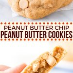 These are seriously the ULTIMATE peanut butter cookies. Soft, chewy, pudgy, extra thick and packed with a double dose of peanut butter thanks to a ton of peanut butter in the batter and peanut butter chips. #cookies #peanutbutter #peanutbutterchips #soft #chewy #thick #easy #peanutbuttercookies from Just So Tasty