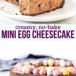 This no-bake mini egg chocolate cheesecake is decadent, completely adorable and perfect for Easter. It has a crunchy Oreo cookie crust, silky chocolate cheesecake filling, and tons of crushed mini eggs throughout. #chocolate #miniegg #easter #dessert #nobake #easy #candy #recipe from Just So Tasty