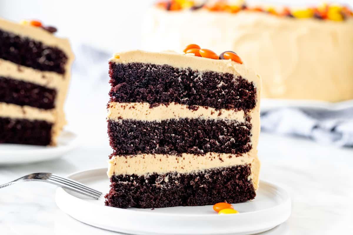 Slice of chocolate peanut butter layer cake.