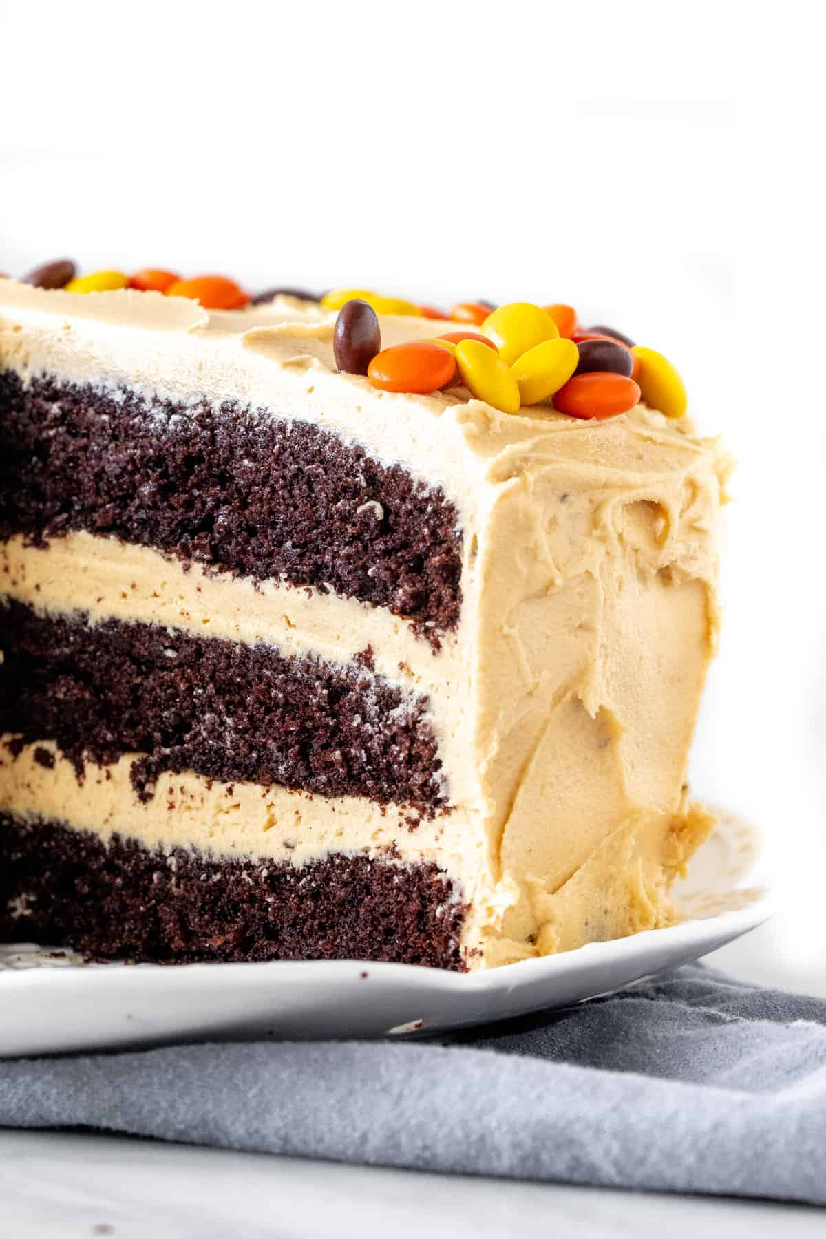 A 3-layer chocolate cake with peanut butter frosting.