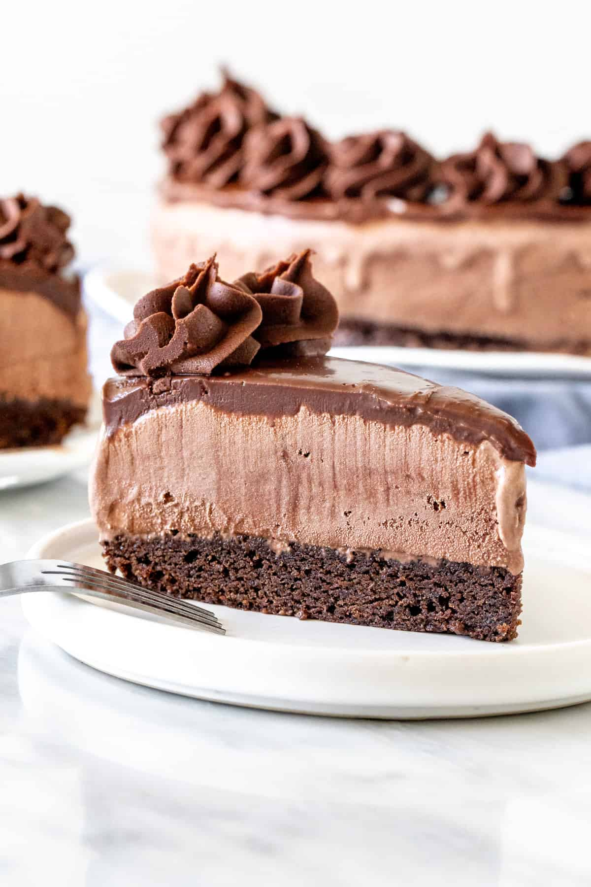 Slice of chocolate ice cream cake