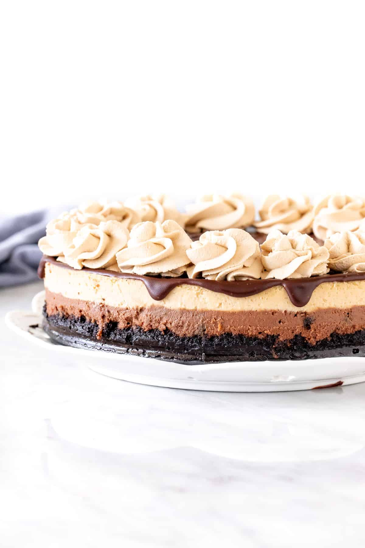 Layered mocha cheesecake with chocolate topping and coffee whipped cream on top