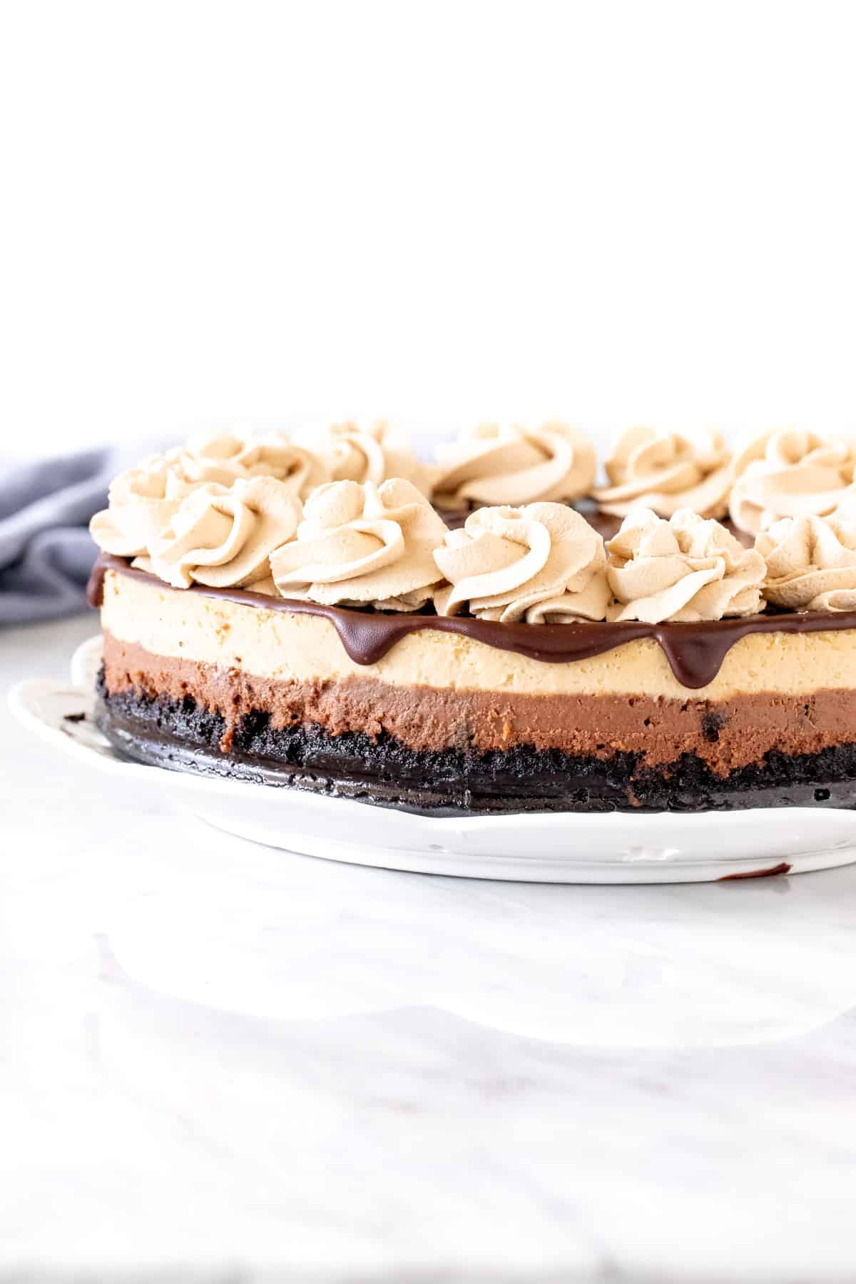 Layered mocha cheesecake with Oreo crust and chocolate on top.
