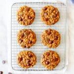 Chocolate Chip Pumpkin Oatmeal Cookies