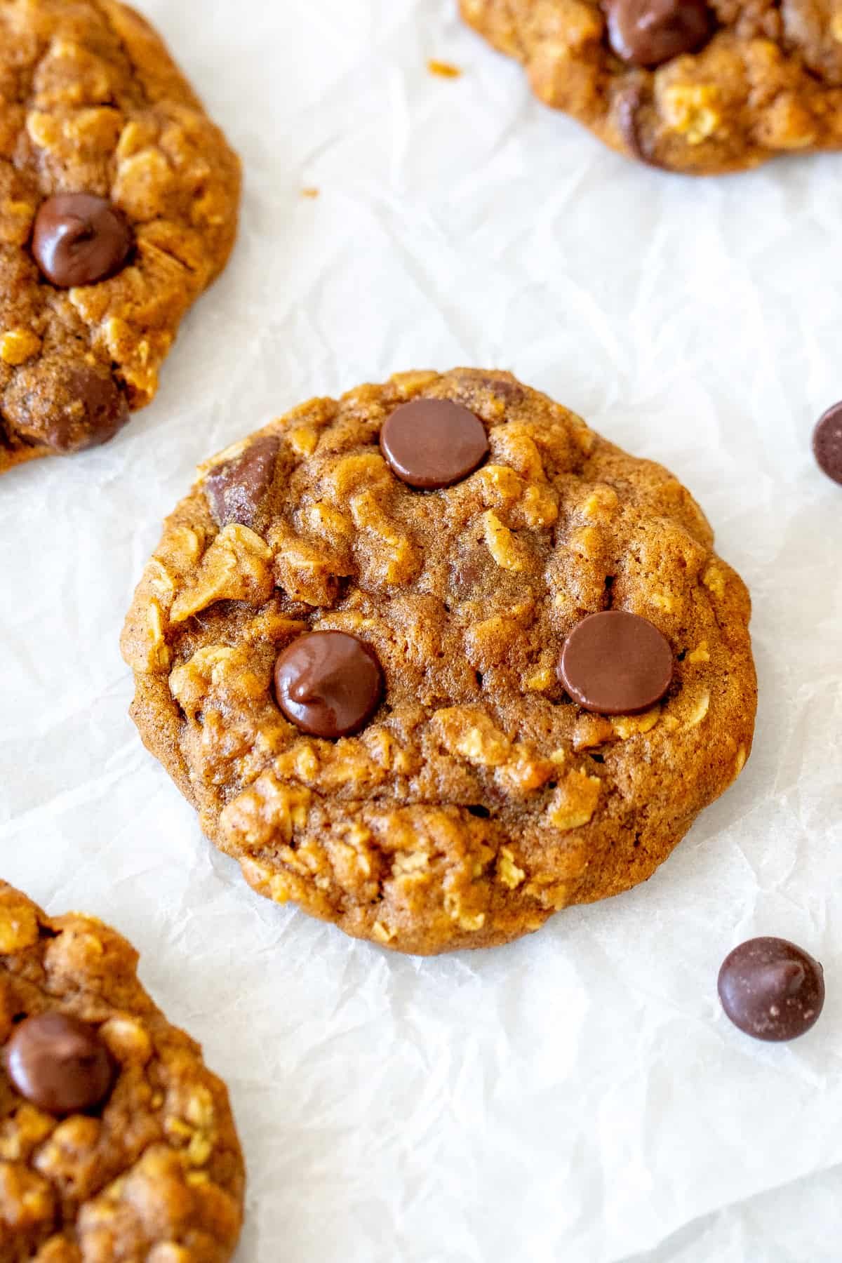 Chip pumpkin oatmeal cookies on baking paper.